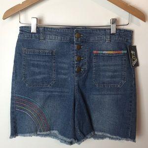 Art Class Embroidered Denim Shorts XL
